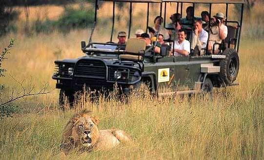 Rondreis Zuid-Afrika met golf en safari's | AmbianceTravel