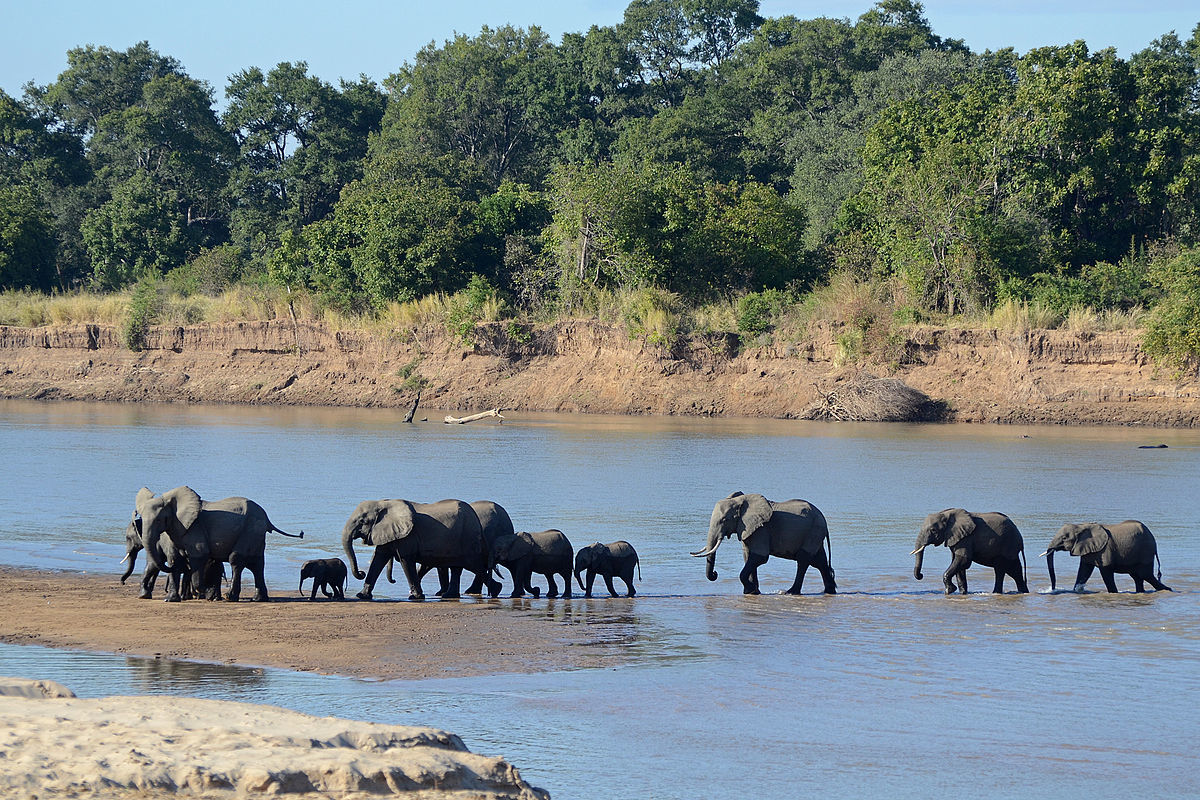 De hoogtepunten van Malawi - AmbianceTravel